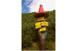 Škutnastá poľana je turistické rozcestí ve Furkotské dolině.